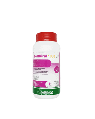 Εντομοκτόνο Βιολογικό Belthirul 1000DP | 200gr