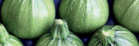 Κολοκύθι Brice | φακ. 1000 σπόρων