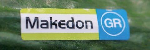 Αγγούρι Makedon | φακ. 100 σπόρων