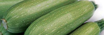 Κολοκύθι Petronella | φακ. 1000 σπόρων