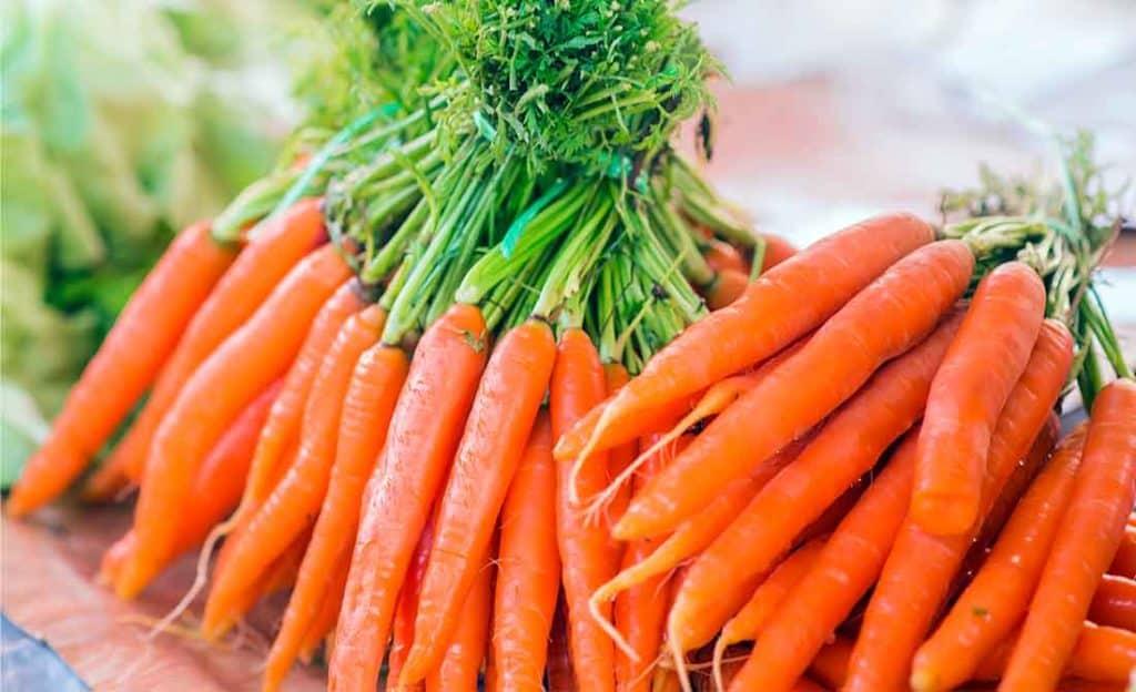 Στοίβα με καλλιέργεια καρότου πιασμένα από τα φύλλα της
