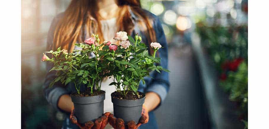 Γυναίκα κρατάει δύο γλάστρες με λουλούδια στα χέρια της