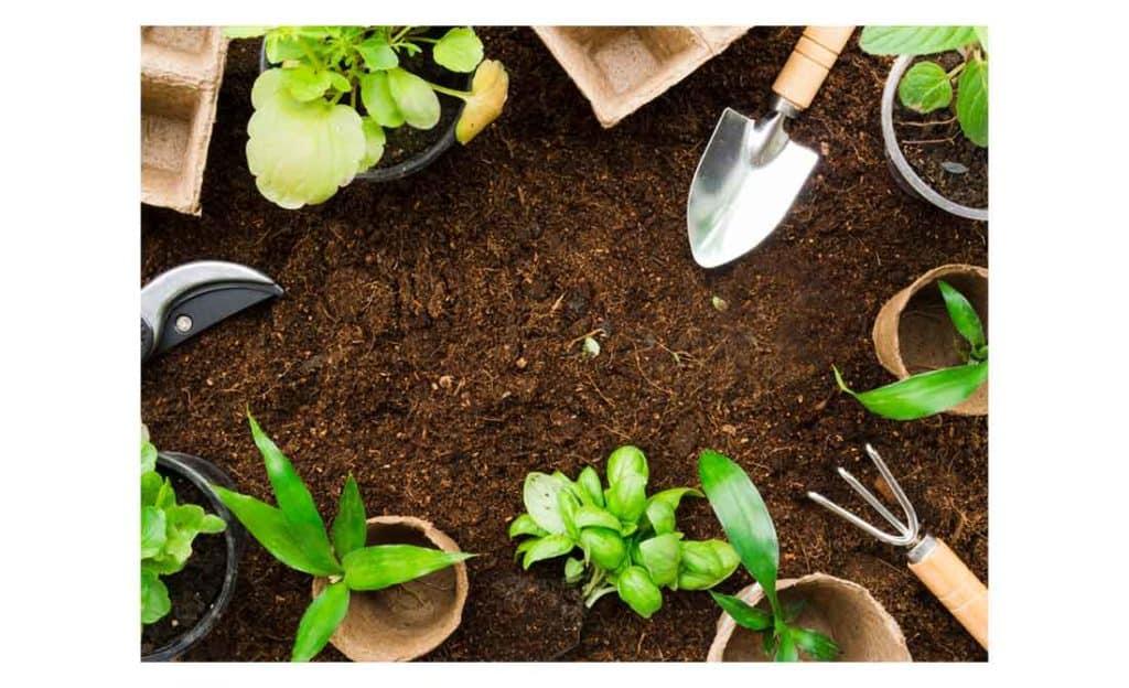 Αντικείμενα κηπουρικής, γλάστρες με φυτά και σπάτουλα πάνω σε καφέ χώμα. Βασικά αντικείμενα για κηπουρική για αρχάριους