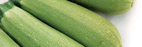 Κολοκύθι Chivas | 1000 Σπόροι