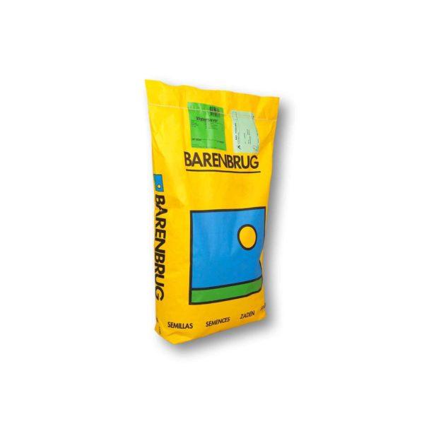 Barenbrug Festuca Fantine Σπόρος | 5 kg