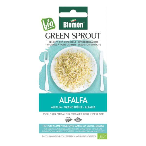 Σπόρος Για Φύτρες Μηδικής Alfalfa   1 τμχ