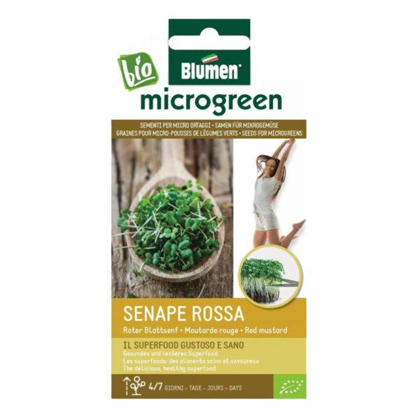 Σπόροι Για Microgreens Μουστάρδα Κόκκινη Senape Rossa   20 gr